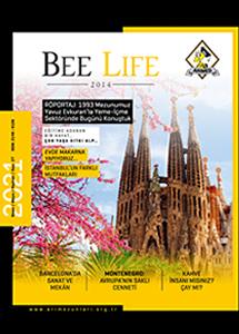 Bee Life - 27